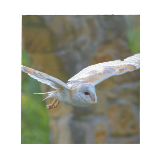 Barn Owl Flying Notepad