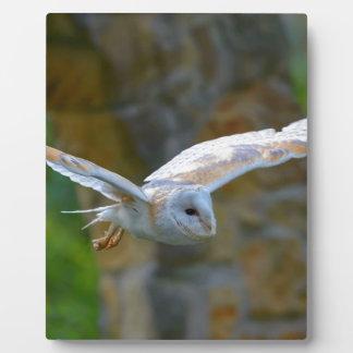 Barn Owl Flying Plaque