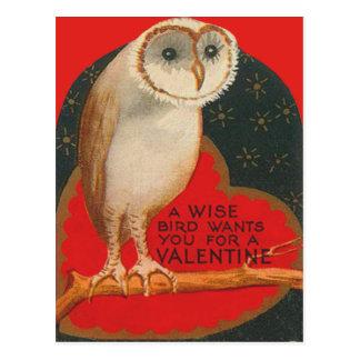 Barn Owl Heart Tree Stars Valentine Postcard