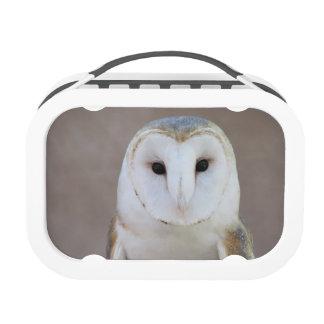 Barn Owl Lunch Box
