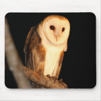 Barn Owl Mousepads