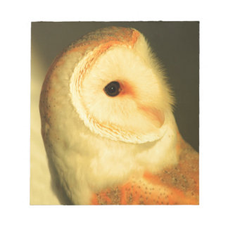 Barn owl notepad