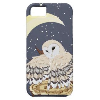 Barn Owl on a Tree Stump iPhone 5 Cases