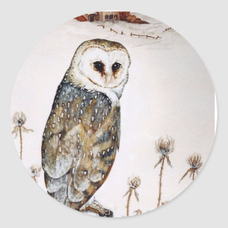 Barn Owl on the hunt Classic Round Sticker