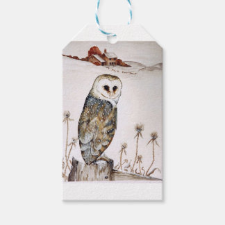 Barn Owl on the hunt Pack Of Gift Tags