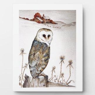 Barn Owl on the hunt Plaque