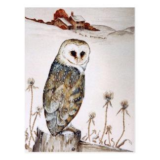 Barn Owl on the hunt Postcard