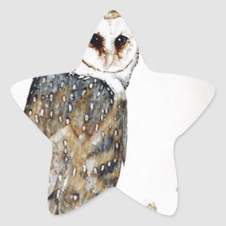 Barn Owl on the hunt Star Sticker