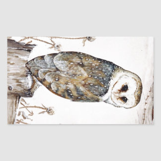 Barn Owl on the hunt Sticker