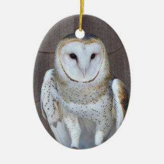 Barn Owl Photo Ceramic Ornament