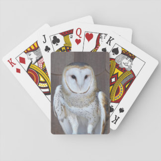 Barn Owl Photo Playing Cards