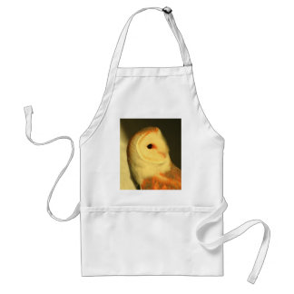 Barn owl standard apron