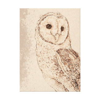 Barn Owl Stretched Canvas Print