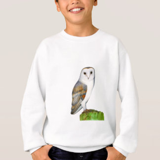 Barn Owl Tyto Alba Watercolor Artwork Print Sweatshirt
