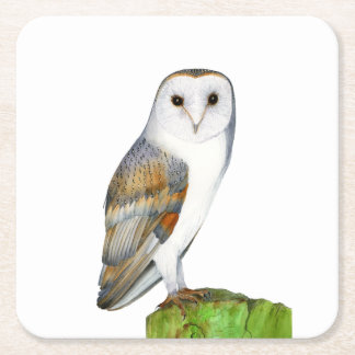Barn Owl Tyto Alba Watercolor Painting Artwork Square Paper Coaster