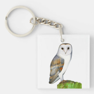 Barn Owl Watercolor Artwork Jewellery and Bags Keychain