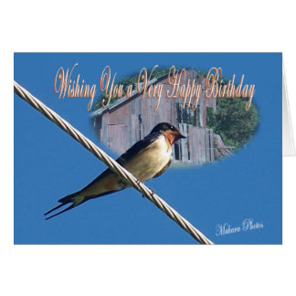 Barn Swallow Bday Card