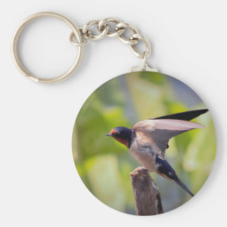 Barn Swallow Bird Photo Keychain