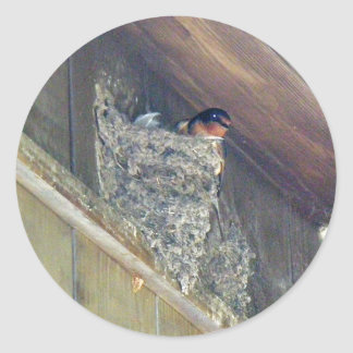 Barn Swallow Series Classic Round Sticker