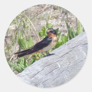 Barn Swallow Series Classic Round Sticker