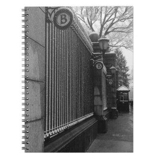 Barnard Winter Notebooks