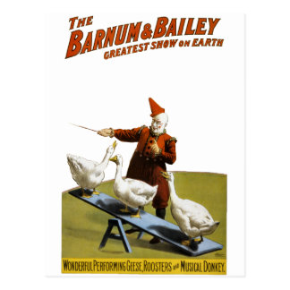 Barnum and Bailey: Performing Geese Postcard