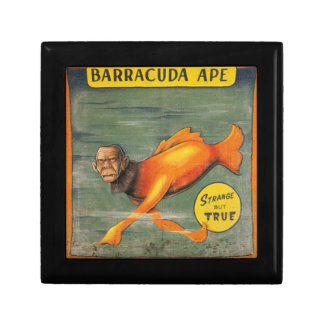Barracuda Ape Gift Box