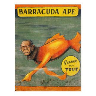 Barracuda Ape Postcard
