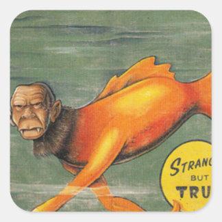 Barracuda Ape Square Sticker