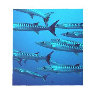 barracuda dive deep sea ocean water tropical wave notepad