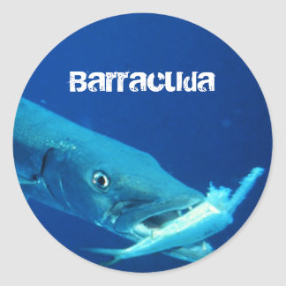 Barracuda Fish Classic Round Sticker