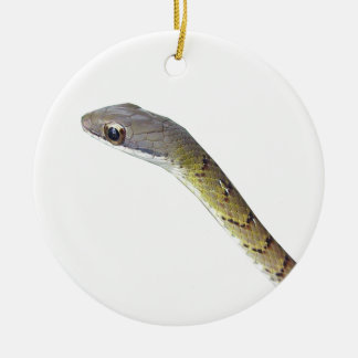 Barred Forest Racer Ceramic Ornament