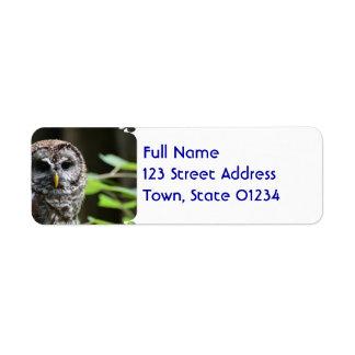 Barred Owl Return Address Labels