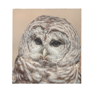 Barred Owl Notepad