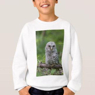 Barred Owl owlet Sweatshirt