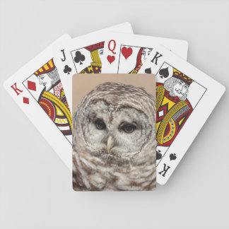 Barred Owl Playing Cards