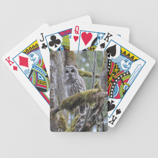 Barred Owl Resting on a Moss Covered Limb Bicycle Playing Cards