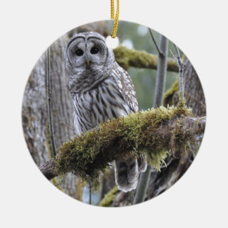 Barred Owl Resting on a Moss Covered Limb Round Ceramic Ornament