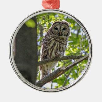 Barred Owl Silver-Colored Round Ornament