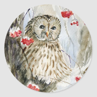 Barred owl snow winter classic round sticker