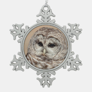 Barred Owl Snowflake Pewter Christmas Ornament