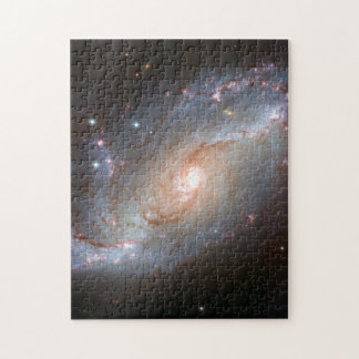 Barred spiral galaxy, NGC 1672 Puzzle