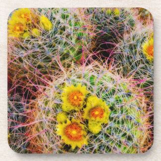 Barrel cactus close up, California Coaster