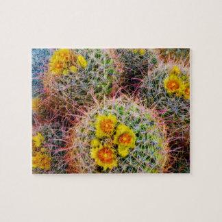 Barrel cactus close up, California Puzzle