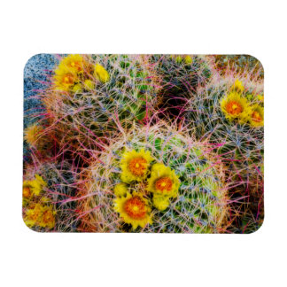 Barrel cactus close up, California Rectangular Photo Magnet