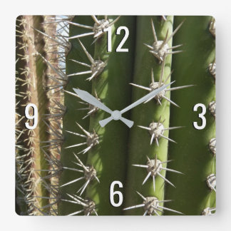 Barrel Cactus II Desert Nature Photo Square Wall Clock