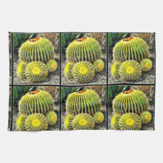 Barrel Cactus Kitchen Towel