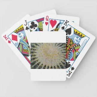 Barrel Cactus Top Bicycle Playing Cards