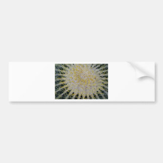 Barrel Cactus Top Bumper Sticker