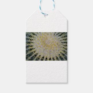 Barrel Cactus Top Gift Tags